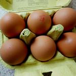 Good eggs!