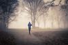 Running in the mist / Le coureur dans la brume...