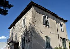 House with roots / Maja juurtega