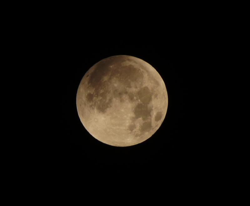 Eclipse totale de Lune - 28 septembre 2015 21153928103_2d5240fb29_o