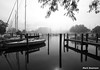 Foggy Harbor by mswan777