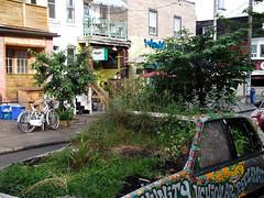 Garden car