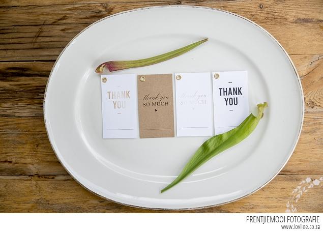 Free Flytrap Guest favour printables