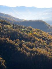 Parco Antola_011_Bavastrelli-Propata_11-15