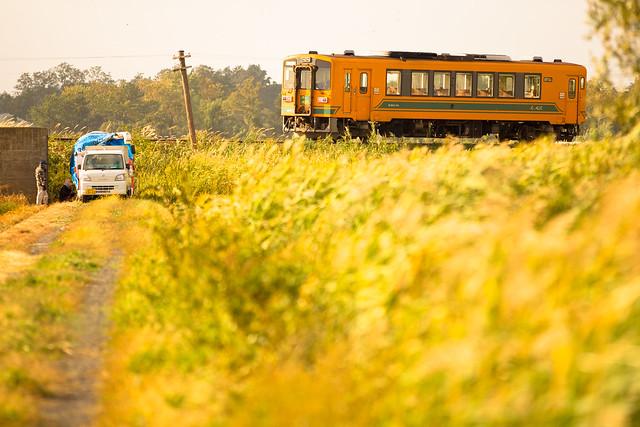 Tsugaru Railway #042 - running on the rice field