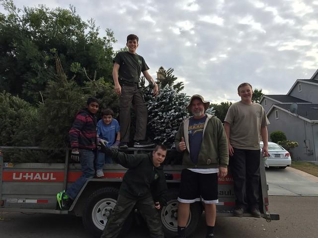 Tree Pick Up 2016