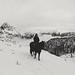 Freddi ricordi autunnali. Black and white Passions by simonettaloss