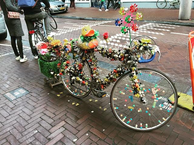 Around Amsterdam 🚲