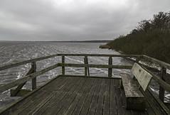Lago di Steinhuder