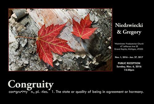 Congruity - Works by Niedzwiecki & Gregory