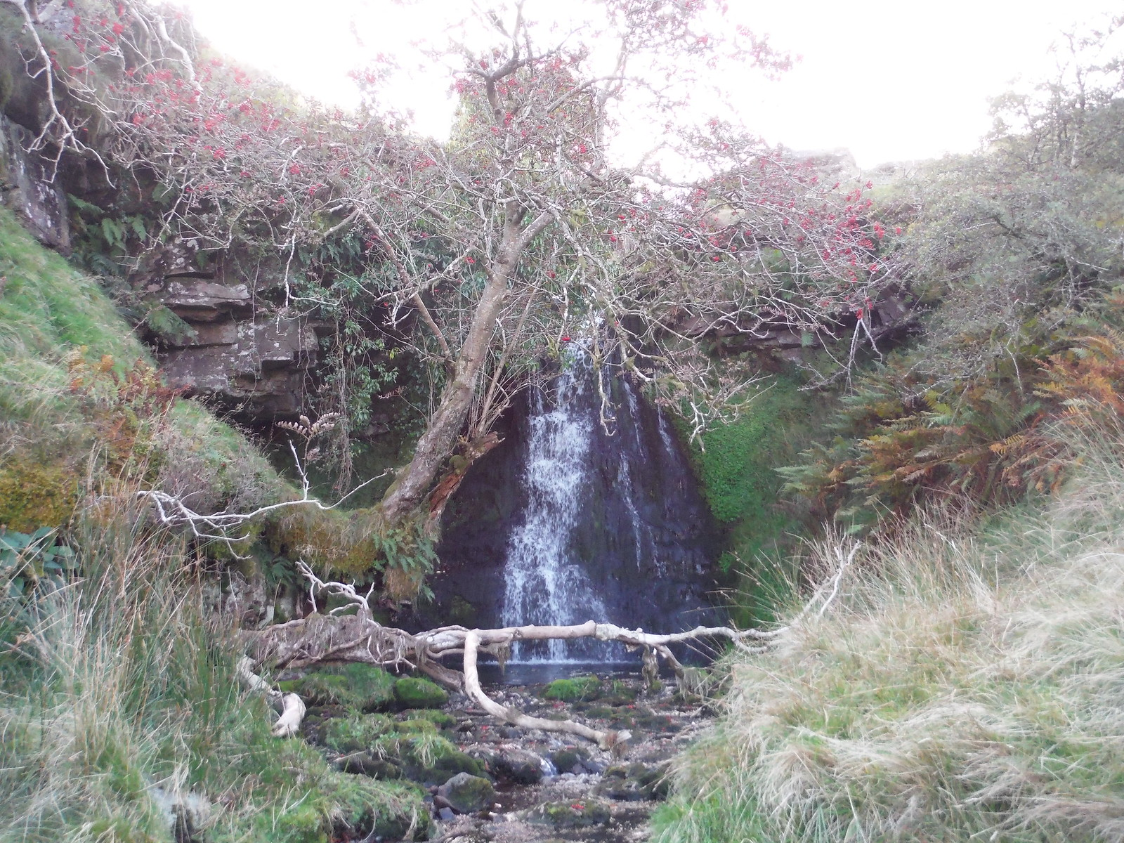 Waterfall on the Nant Tawe Fechan (stream) SWC Walk 279 The Black Mountain - Y Mynydd Du (Glyntawe Circular)