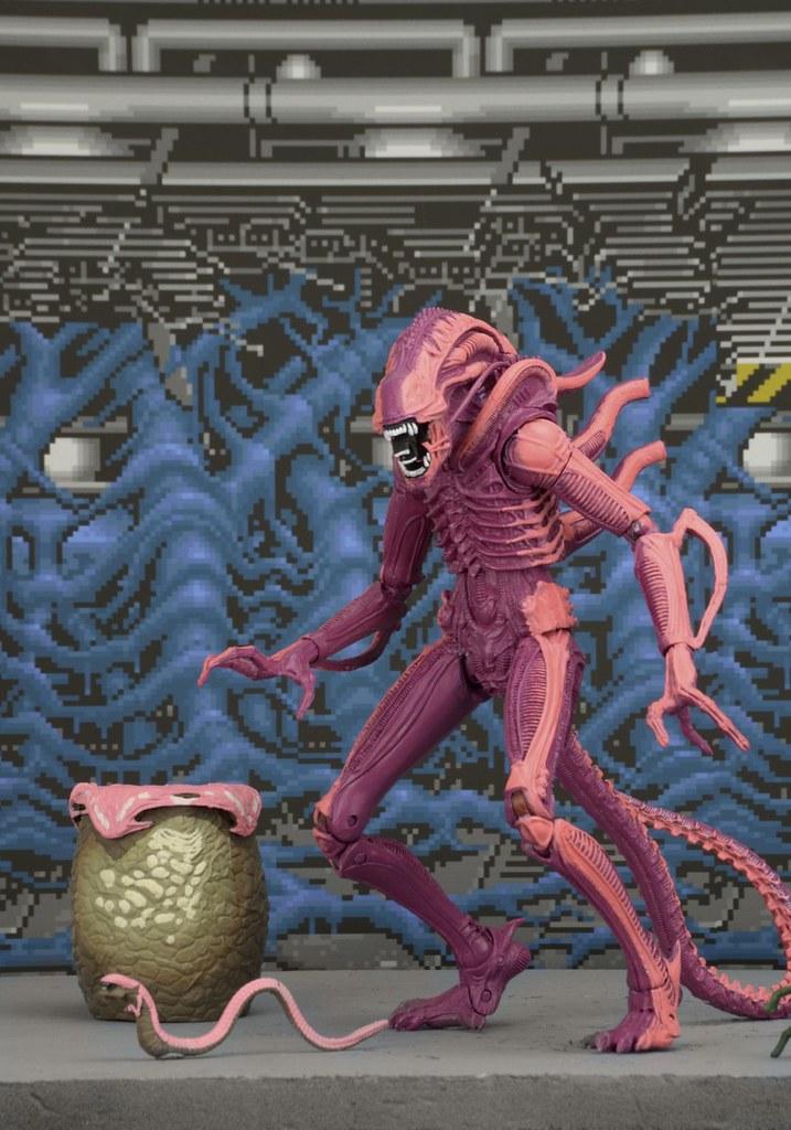 粉粉der?!NECA【異形戰士電玩塗裝版】Xenomorph Warrior Arcade Appearance 7 吋人偶作品