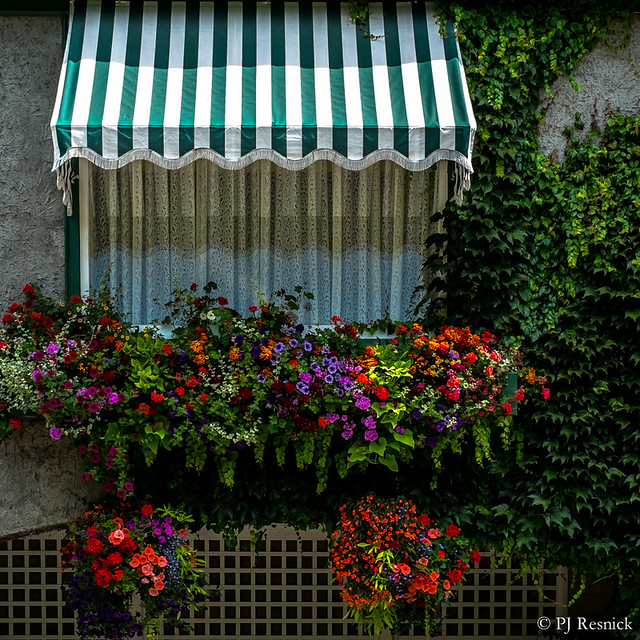 Accented Awning