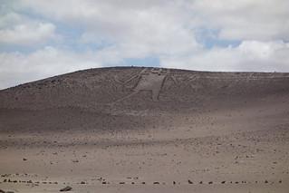 Gigante de Atacama, Chile
