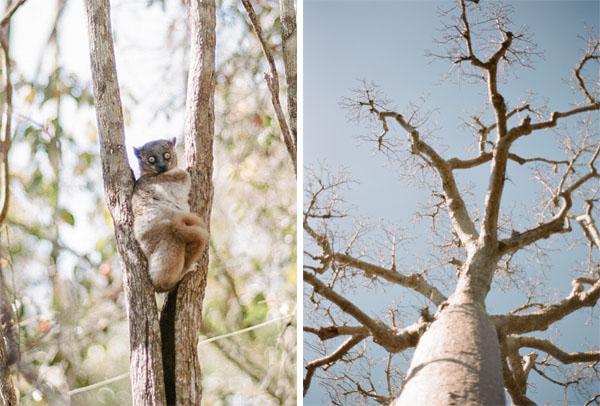 RYALE_Madagascar_Blog2_052