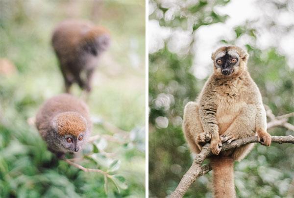 RYALE_Madagascar_Blog2_020