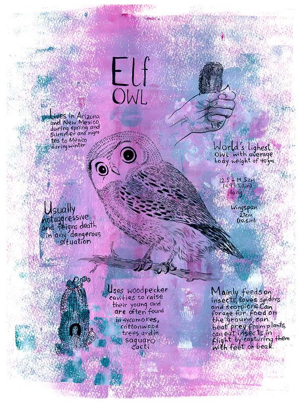 Owls_04_Elf