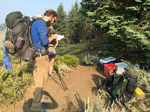 PCT: Day 119