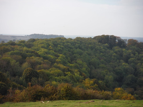 Lee Wood, Barton Hills, and Sharpenhoe Clappers beyond it