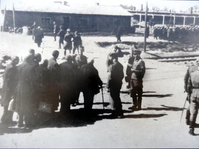 Auschwitz Birkenau (67)