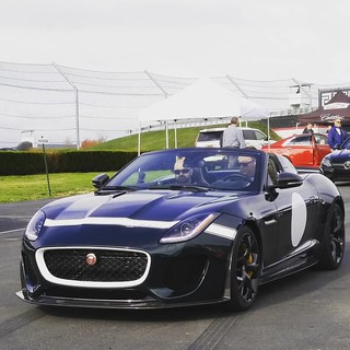 #track ready #jaguar#ftype#rare  Speedspectator.com  #english#luxury#race#cars#rides#topless#auto#automobile#monticello#rides#tagforlikes#l4l#followme#followback#instafollow#instalike#carsofinstagram#carinstagram#carswithoutlimits #amazingcars247