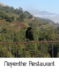 napenthe restaurant