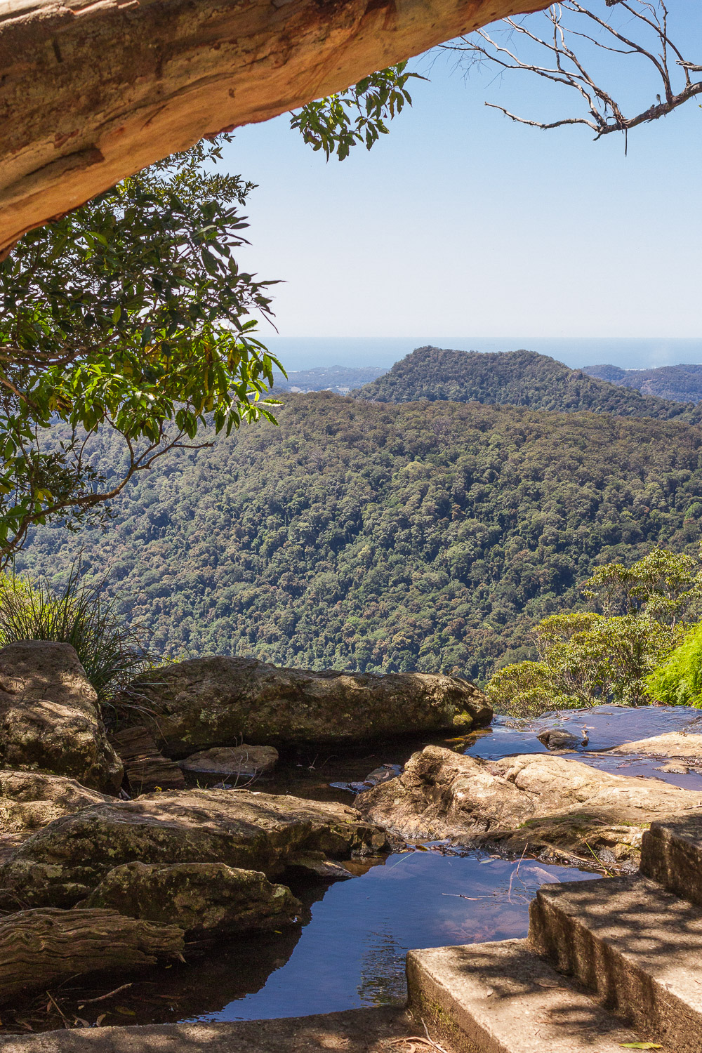 Canyon lookout gold coast hinterland walks
