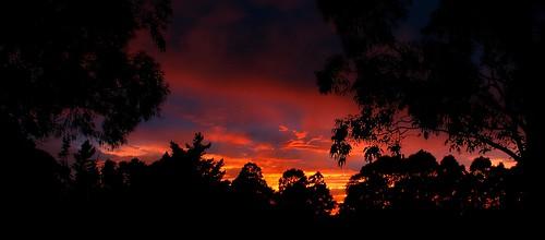 Dawn Anzac Day 2014