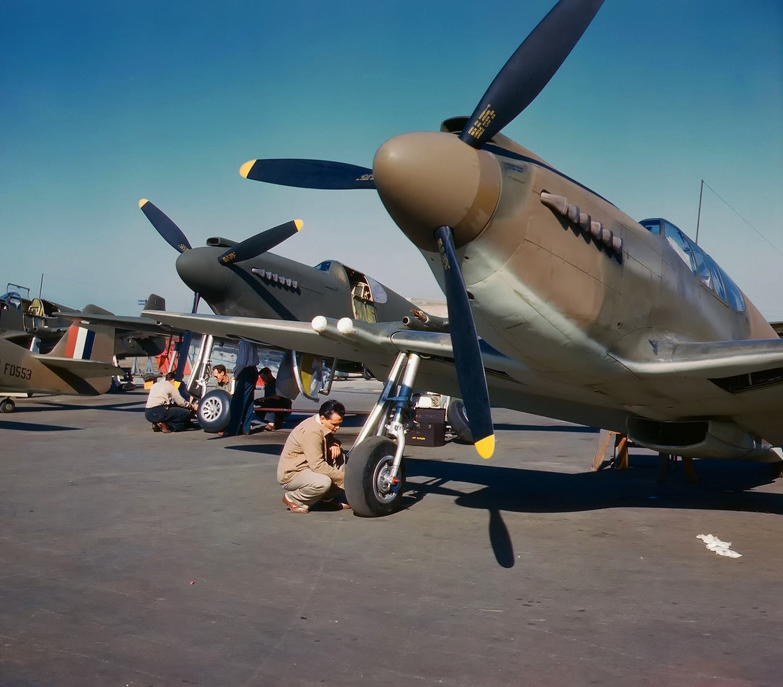 "North American NA-91 Mustang fighters being serviced at North American Aviation at Inglewood, California (USA), in October 1942. After passing of the lend-lease act in March 1941, the USAAF ordered 150 NA-93 Mustang Mk IA fighters on 25 September 1941 for delivery to the United Kingdom. The RAF serial numbers assigned were FD418-FD567 (FD553 is visible on the left). For contractual purposes, these aircraft were assigned the U.S. designation of P-51 (USAAF serials 41-37320 to 41-37469). The Mustang IA differed from earlier versions in having the machine guns replaced by four 20 mm wing-mounted Hispano cannon. After December 1941 serials FD418-FD437, FD450-FD464, FD466-FD469, and FD510-FD527 were reposessed by the USAAF (and briefly named A-36A Apache). Original caption: ""P-51 fighter planes being prepared for test flight at the field of the North American Aviation, Inc., plant in Inglewood, Calif."