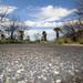 Best by Kids: Tucson, Winter & Spring '15