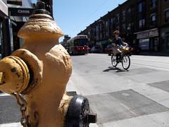 College hydrant, bike, and TTC streetcar