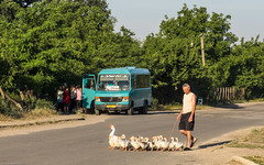 2015 Vu en roulant en Moldavie.ouest,scènes de matin et de soir