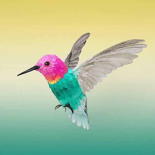 Paper Sculpture Hummingbird by Ollanski and Cris