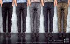 [Deadwool] Corduroy pants