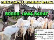 Dibuka Batch 2 Pengiriman Massal ke Bogor, Jawa Barat Oktober 2015 (Ditutup)