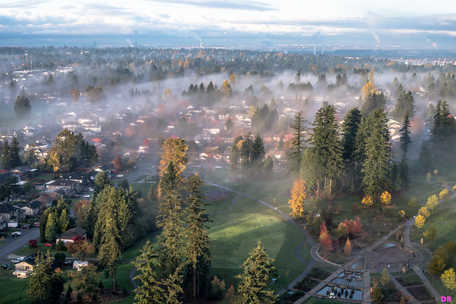 Foggy fall days over Metro Vancouver