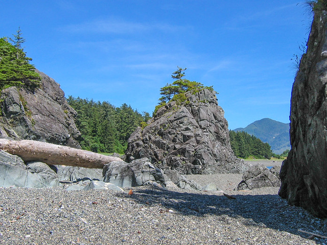 Nootka Island in July