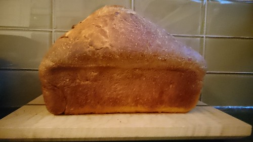 Helen's Special Raisin Bread