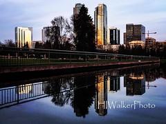 Reflection at Bellevue Park. #bellevue #bellevuepark #reflection #cityatsunset #hiwalkerphoto