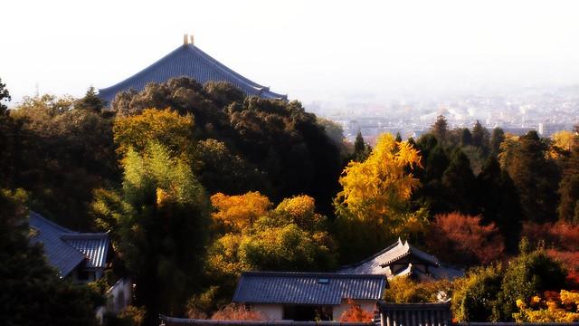 Todai-ji temple seen from Nigatsu-do