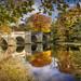 Sunderland Bridge, Croxdale, Durham by DM Allan
