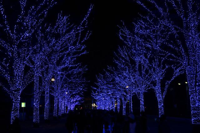 渋谷の青の洞窟2016-9.jpg