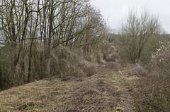 Abandoned railway, 01.03.2015.