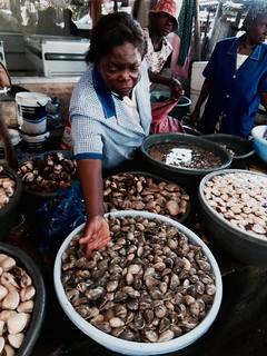 Maputon kalamarkkinat. Kalamarkkinoilla työnjako oli sukupuolittunut niin, että miehet myivät arvokkaampia kaloja ja naiset simpukoita.
