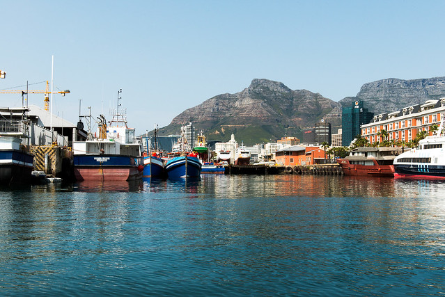 harbor of cape town