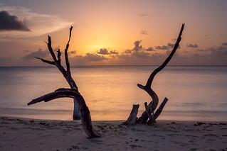 Barbados-58