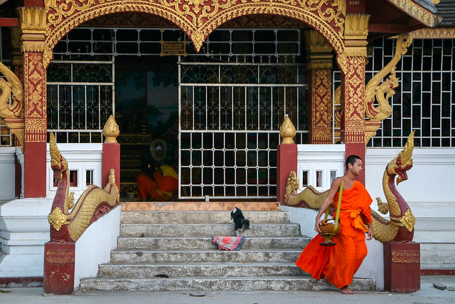 A buddhist monk in Wat That Luang, Luang Prabang, laos ルアンパバーン、ワット・タートルアンにて