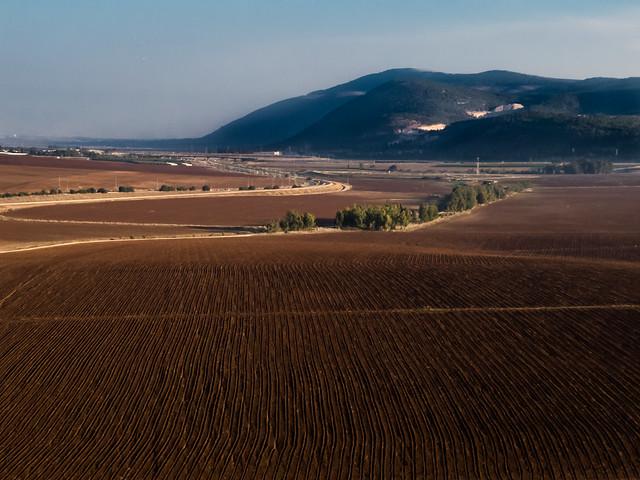 Mt Gilboa