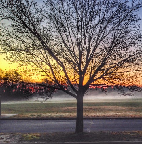 morning fog sunrise december submittedtopwdecember152015