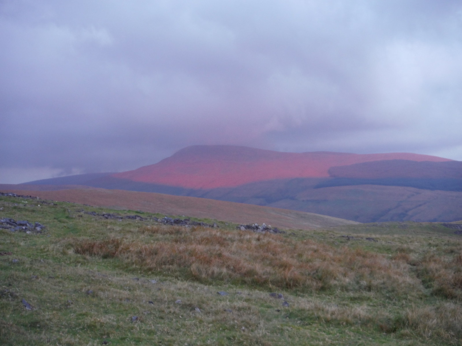 Fan Gyhirych in the Evening Sun SWC Walk 86 Fan Brycheiniog and Fan Foel (The Black Mountain)